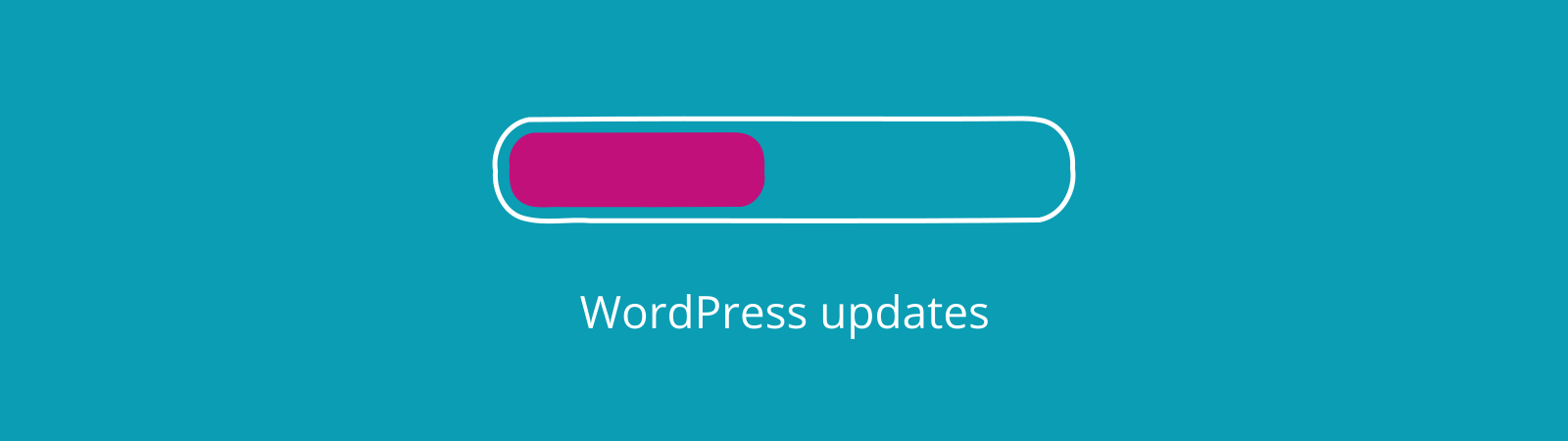 WordPress website security updates for core and plugins