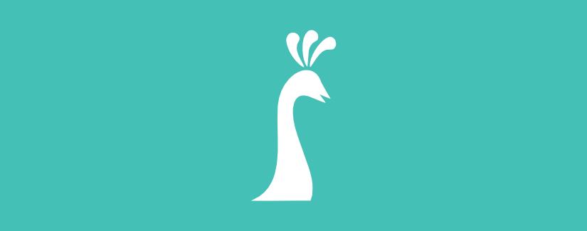 Web design project placeholder