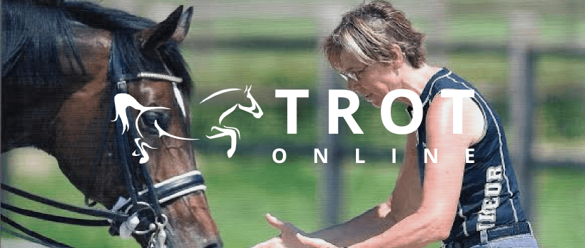 Ecommerce for Trot in Nottingham by Magento agency